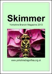 skimmer13cover